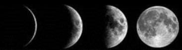maanfasen-volgen (2)